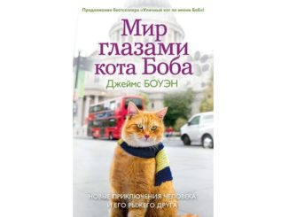 Мир глазами кота Боба